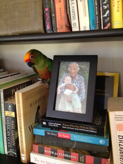 Bookshelf Bird with Papa