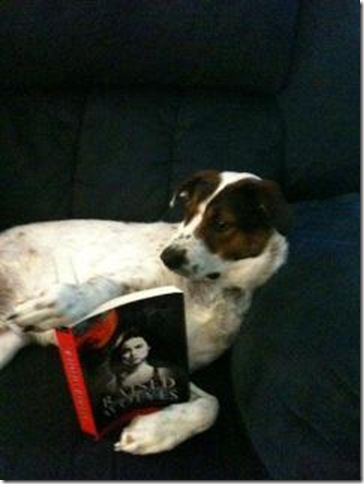 BITW Dog Reading Raised by Wolves