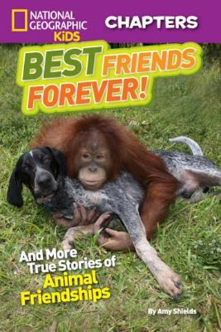 Best Friends Forever NGeo