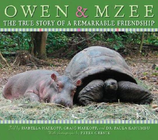 Owen and Mzee