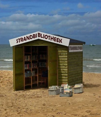 A tiny library with books for beach reading.