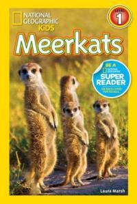 NG Reader Meerkats